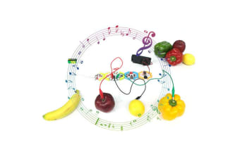 Honeycomb Music Kit Creating/Performing Education/Learning/Training Kids/Toy