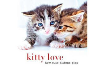 Kitty Love - How Cute Kittens Play