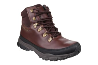 Cotswold Womens/Ladies Beacon Lace Up Hiking Boots (Brown) (2 UK)