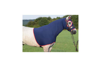 Belvoir Rug Company Show Hood Life (Regal Navy with Red Trim)