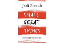 Small Great Things - The bestselling novel you won't want to miss