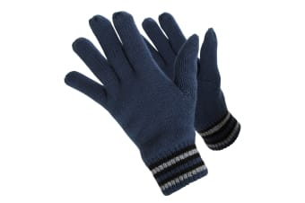 ProClimate Mens Thinsulate Gloves (Navy)