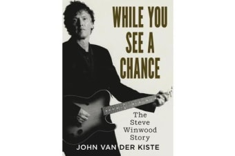 While You See A Chance - The Steve Winwood Story