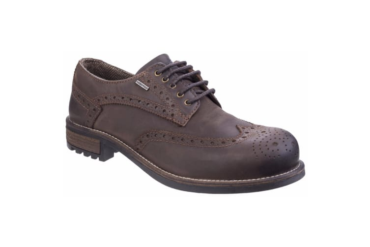 Cotswold Mens Oxford Lace Up Shoes (Brown) (11 UK)