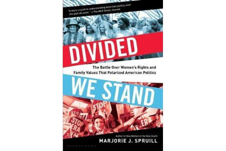 Divided We Stand - The Battle Over Women's Rights and Family Values That Polarized American Politics