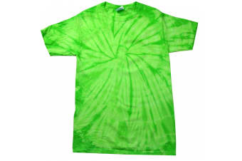 Colortone Adults Unisex Tonal Spider Short Sleeve T-Shirt (Spider Lime) (S)