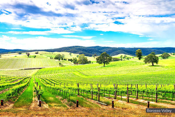 Great Southern Journey - 6 Day Luxury Rail Package from Adelaide to Brisbane Including Flights for Two (Departing BNE)