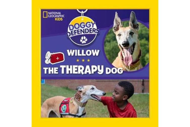 Willow the Therapy Dog