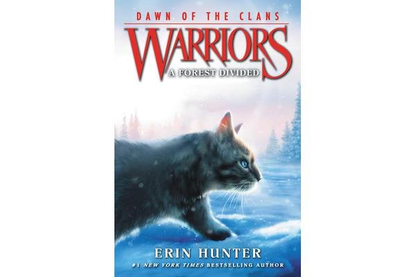 Warriors - Dawn of the Clans #5: A Forest Divided