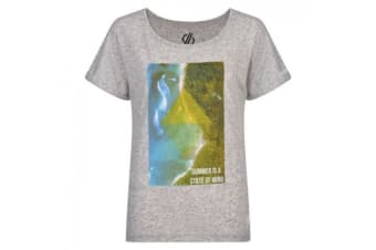 Dare 2b Womens/Ladies Summer Days Graphic T-Shirt (Argent Grey) (12UK)