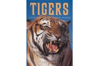Tigers - A Portrait of the Animal World