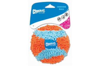 Indoor Ball Chuck It Soft Dog & Puppy Toy (ChuckIt)