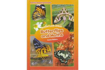 Earth's Amazing Animals: Butterfly or Moth? - Animal Look-Alikes