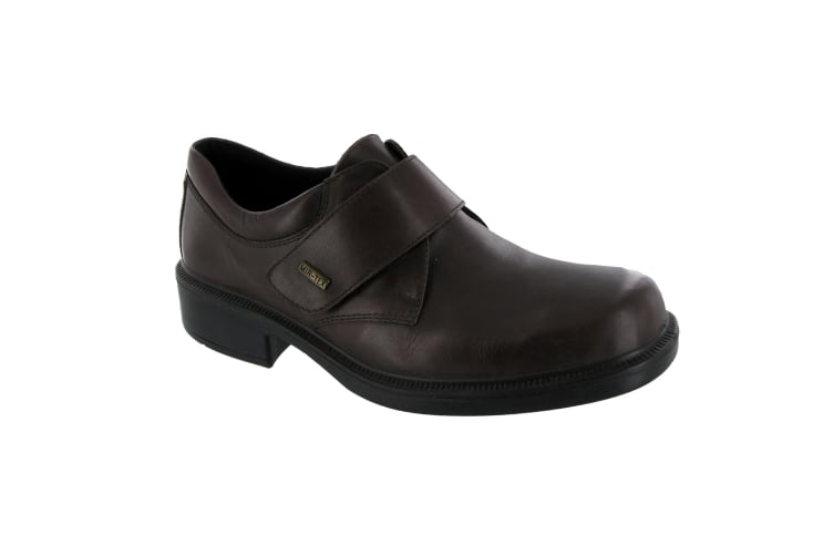 Cotswold Cleeve Mens Shoe / Mens Shoes (Brown) (7 UK)