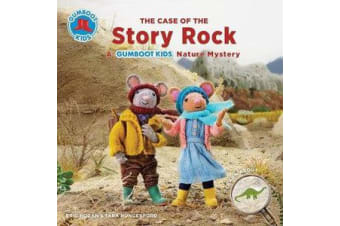 The Case of the Story Rock