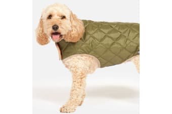 Danish Design Quilted Dog Coat (Green)