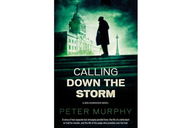 Calling Down The Storm - The Fifth Ben Schroeder Legal Thriller
