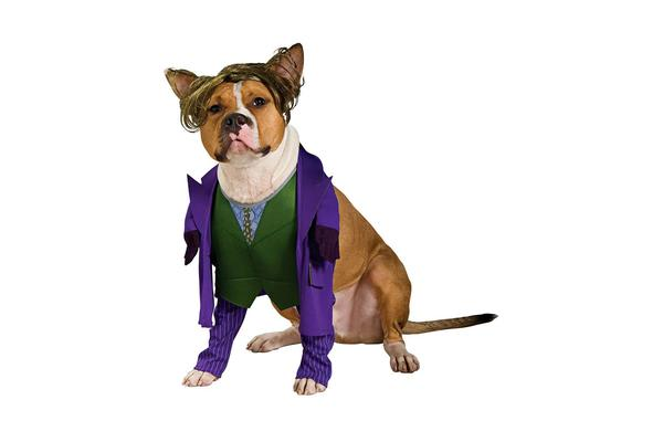 DC Comics The Joker Dog Costume - M