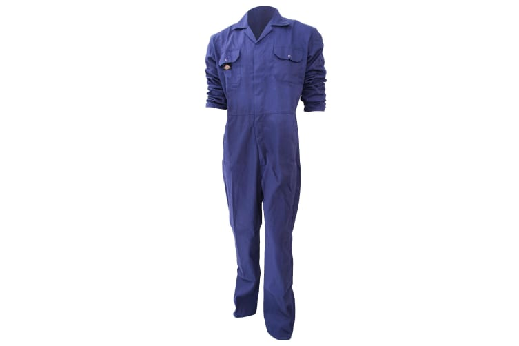 Dickies Redhawk Economy Stud Front Coverall Regular / Mens Workwear (Pack of 2) (Royal) (L)