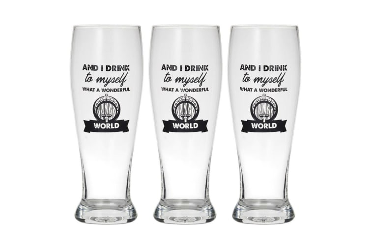 3PK Giftworks 550ml Beer Drink Drinking Glass Barware -And I Drink to Myself CLR
