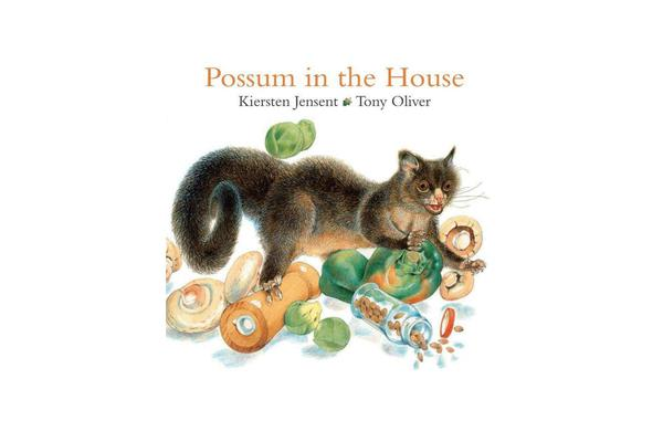 Possum in the House Bc Ed