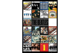 The Beatles Albums Poster (Multicoloured) (One Size)