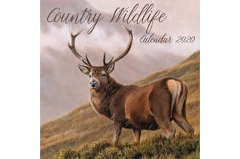 Country Wildlife 2020 Premium Square Wall Calendar 16 Months New Year Decor Gift