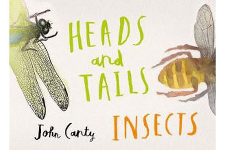 Heads and Tails - Insects