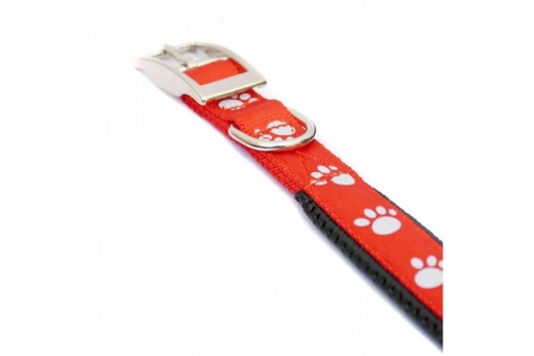 Rosewood Reflective Soft Protection Nylon Padded Dog Collar (Red) (18in)