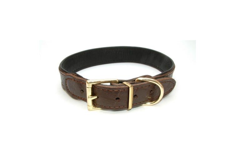 Vital Pet Products Chunky Brown Leather Dog Collar (Brown) (20mm x 45cm)
