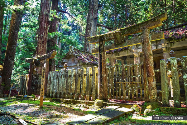 JAPAN: 10 Day Small Group Osaka & Tokyo Tour Including Flights For Two