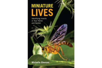 Miniature Lives - Identifying Insects in Your Home and Garden