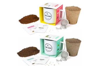Grow Your Own Herbal Tea Kits | Urban Greens - Peppermint