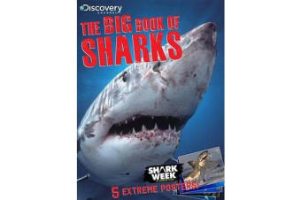 The Big Book of Sharks
