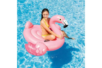 Flamingo Inflatable Pool Toy