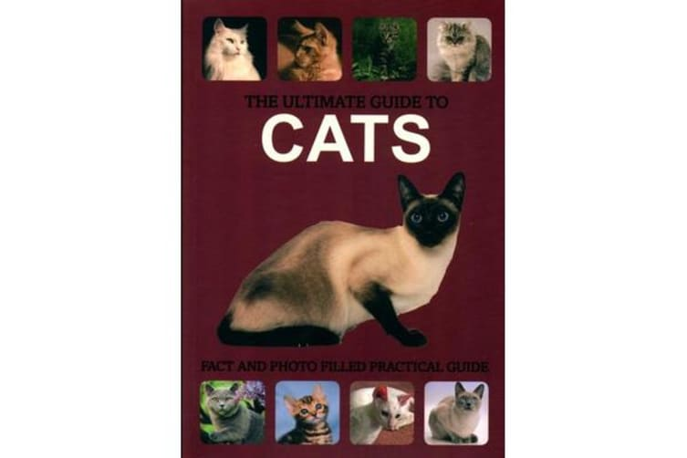 e58be4767cf The Ultimate Guide to Cats