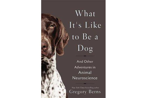 What It's Like to Be a Dog - And Other Adventures in Animal Neuroscience