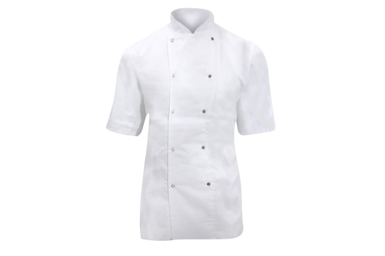 Dennys Ladies/Womens Short Sleeve Chefs Jacket / Chefswear (White) (M)