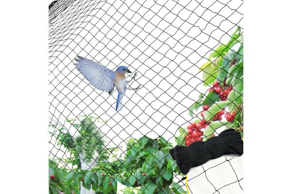 NEW Commercial Fruit Tree Plant Knitted Anti Bird Netting 5x100m&4GSM