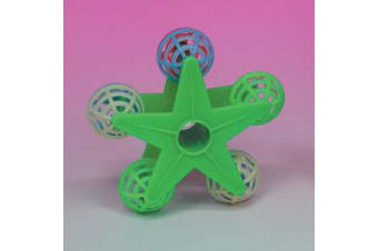 Jingle Star Perch Bird Toy