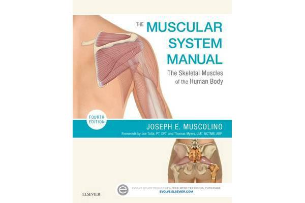 The Muscular System Manual - The Skeletal Muscles of the Human Body