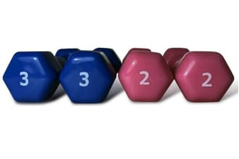 Workoutwiz 10 Pound Dumbbell Weights Set Exercise Fitness Home Gym Dumbells