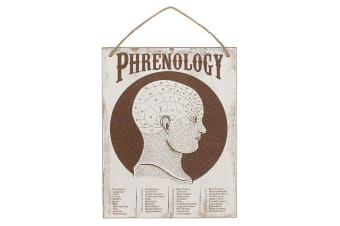Cabinet Of Curiosities Phrenology Wall Sign (Brown) (One Size)