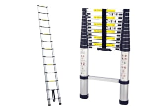 TRA 3.8m Portable telescopic ladder with carry bag