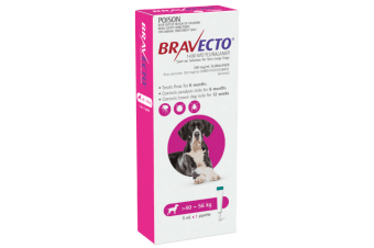 Bravecto SPOT-ON for X-Large Dogs 40-56kg - Purple (6 Months)