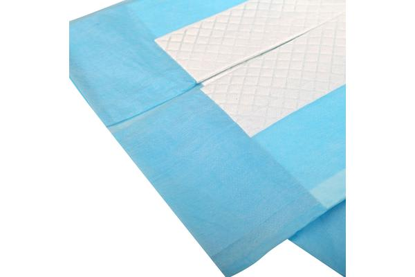 i.Pet 200 Pack Puppy Toilet Training Pads (Blue)