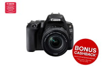 Canon EOS 5D Mark IV Manual & Support