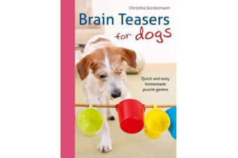 Brain teasers for dogs - Quick and easy homemade puzzle games