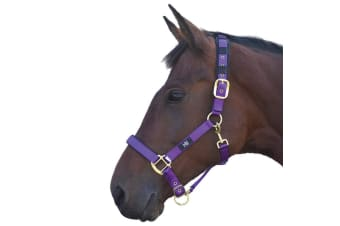 Hy Deluxe Padded Head Collar (Purple) (Cob)