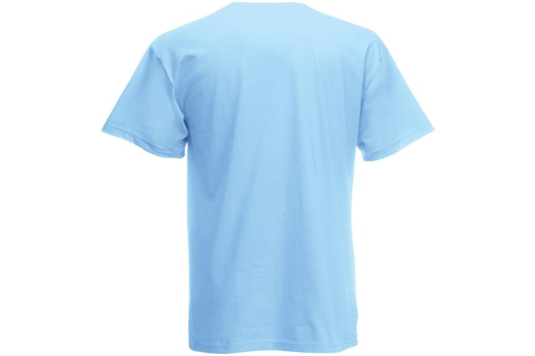 Mens Short Sleeve Casual T-Shirt (Light Blue) (Large)